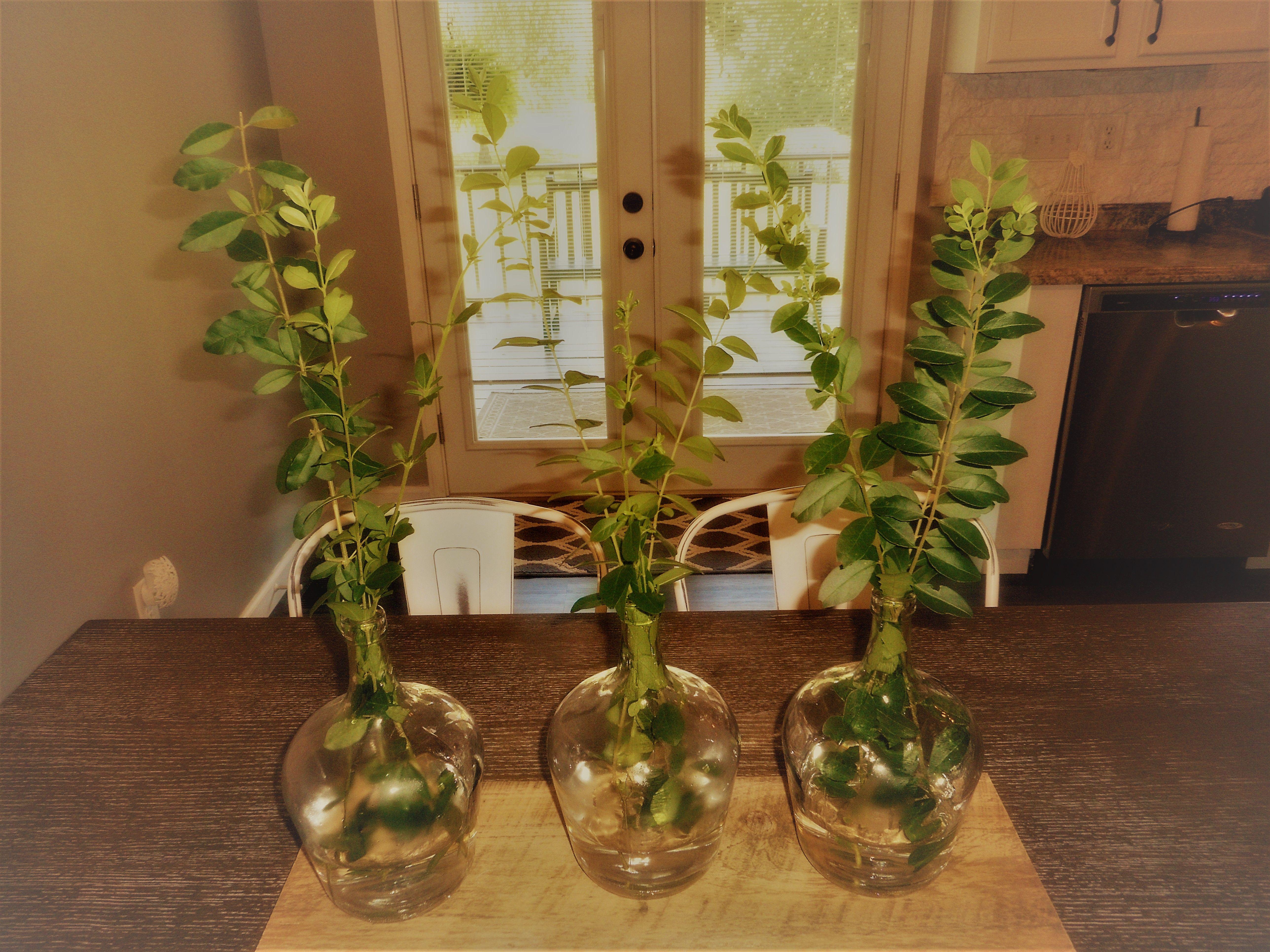Branches in bottles centerpiece bottle centerpieces