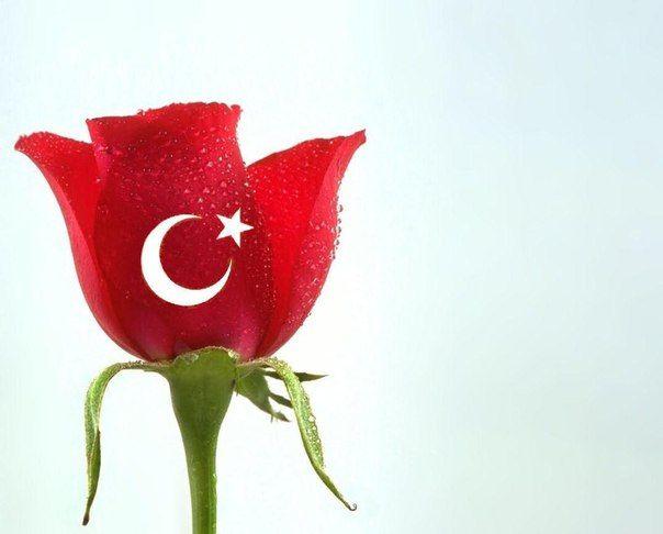 Юбилеем, открытки турецкие с надписями