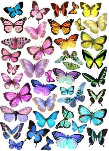 Eßbar Tortendekoration Schmetterlinge Muffin Tortenaufleger butterfly Dekoration