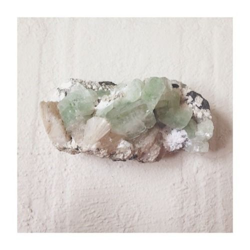 tahitianmango:  apophylite green     my new crystal beauty that chose me from @thecrystalcastle in byronbay -earth magic & healing -connection with nature  -childlike joy & wonder -self healing & evolving  -opening the heart  #crystals #earthmagic #apophylitegreen #crystalcastle #byronbay #memories #healing #chosenone