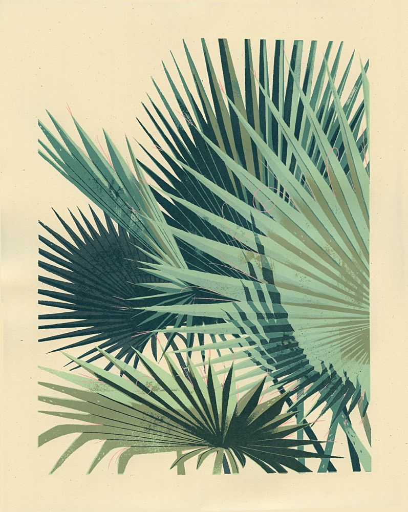 """PALM PLANT 2- 5-color, hand-pulled screenprint- 16"""" x 20""""- Edition ..."""