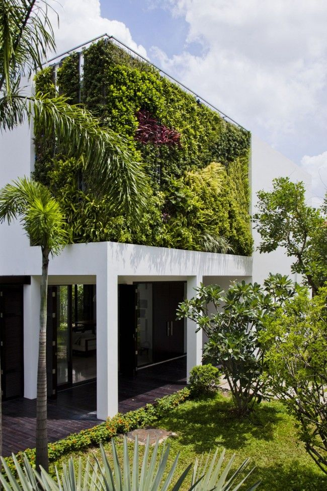 Vertical Greening Of The Outer Wall Of The Two Storey House