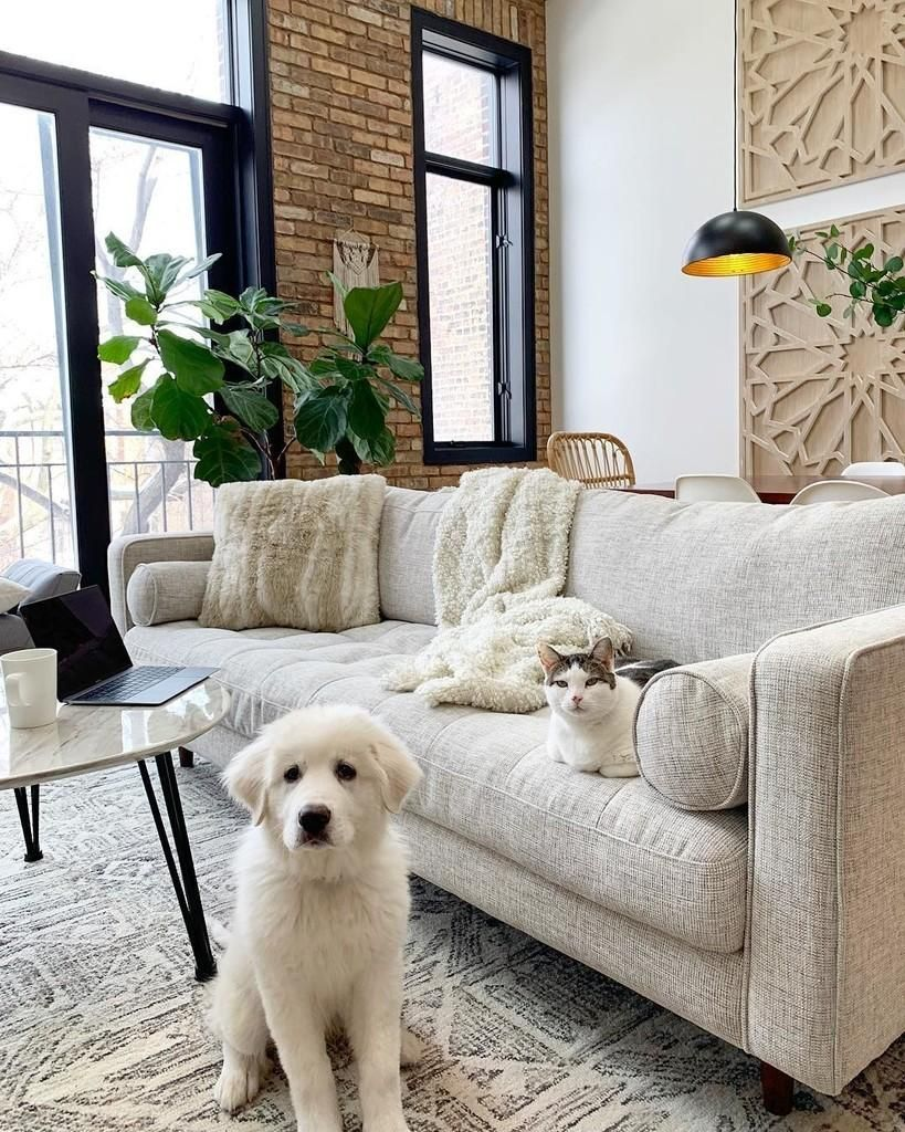 14 Unexpected Ways To Upgrade Your Living Room In 2020: Beige Sofa Living Room, Neutral Sofa, Beige Sofa