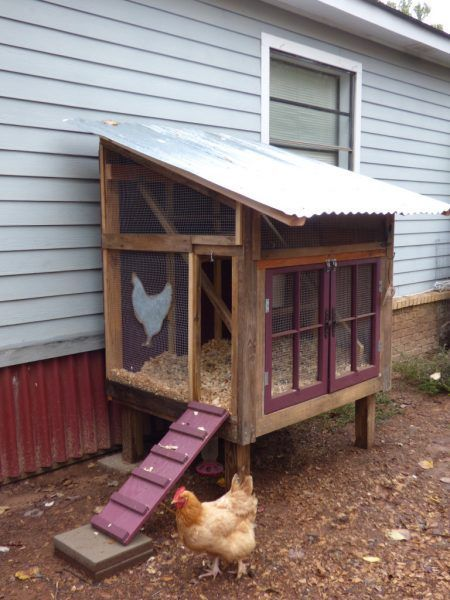 22 Low Budget Diy Backyard Chicken Coop Plans: 34 Free Chicken Coop Plans & Ideas That You Can Build On Your Own