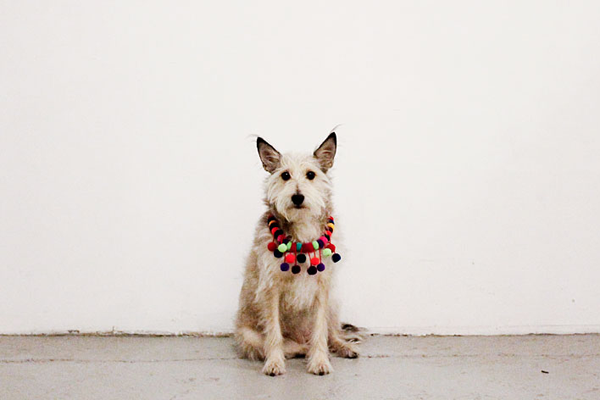 This Dog Looks Cuter In Clothes Than You Ever Will #refinery29  http://www.refinery29.com/2013/01/41769/where-i-was-from#slide9  Photo: Courtesy of Where I Was From.