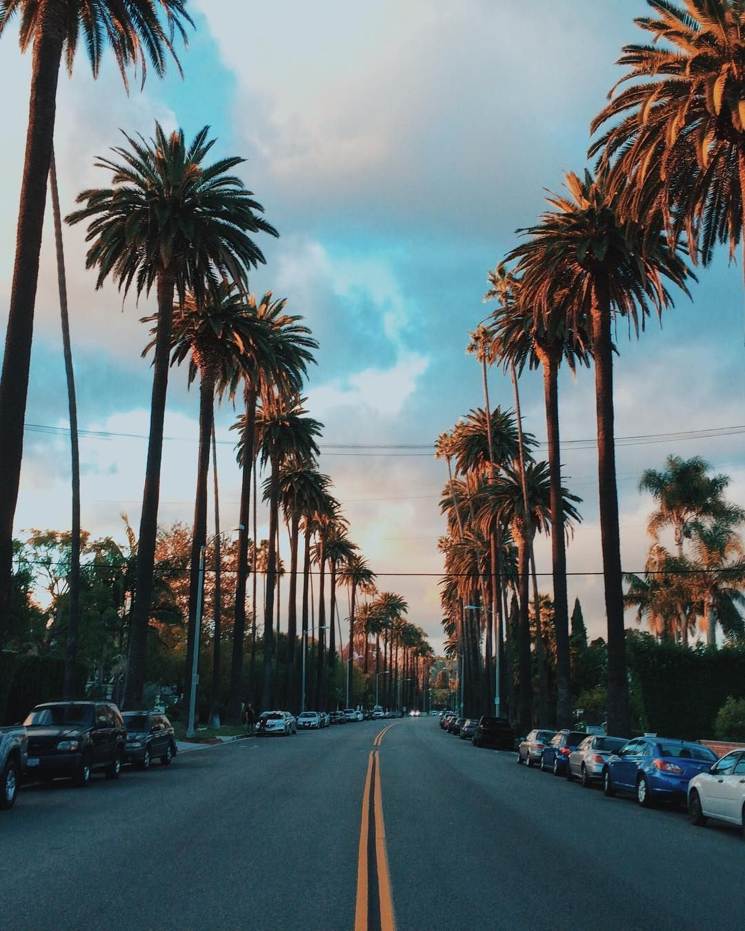 Palm Trees And Incredible Los Angeles Street California