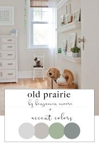Old Prairie By Benjamin Moore