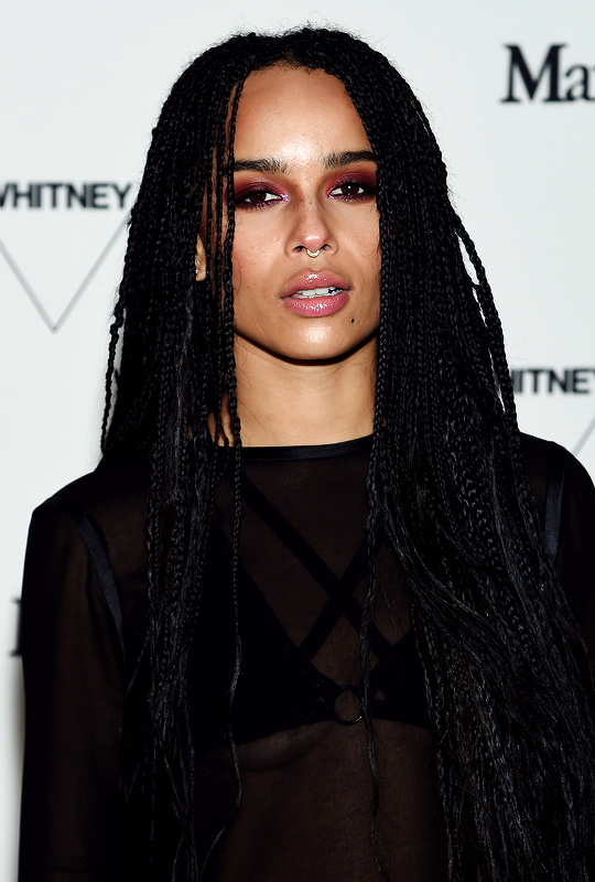 Image result for zoe kravitz style exotic
