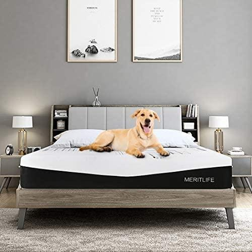 Top 10 Best Mattresses For Heavy People In Canada Thedigitalhacker In 2020 Best Mattress Foam Mattress Bed Mattress