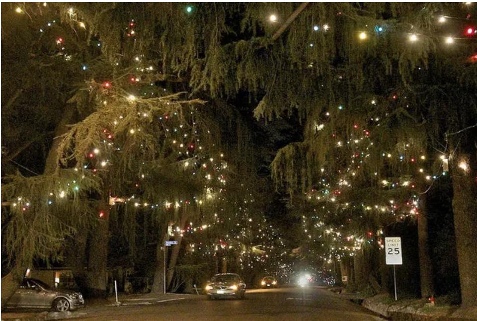 Dola S Holiday Light Tour California Christmas Holiday Holiday Lights