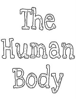 Human Body Unit with printables and weekly lesson plan
