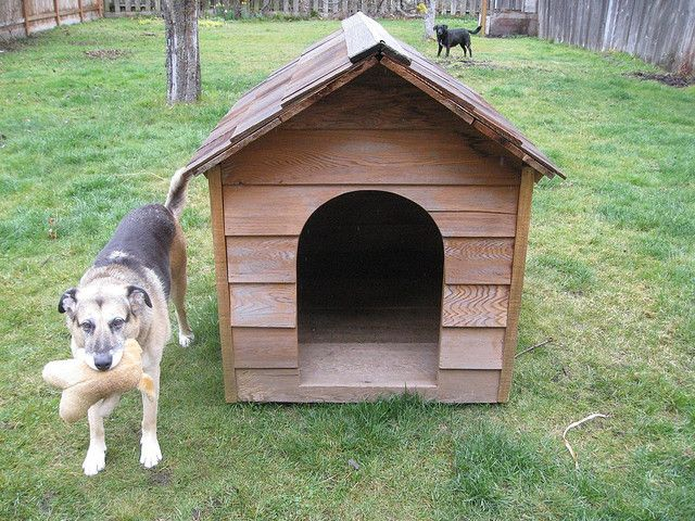 How To Convert An Old Dog House Into A Chicken Coop Dog House Homemade Dog House Dog Houses