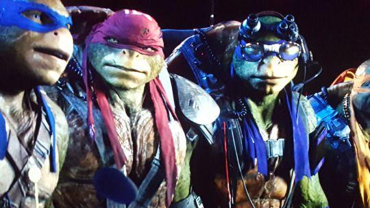 Raphael Leonardo Donatello Michelangelo Teenage Mutant Ninja Turtles Movie Teenage Ninja Turtles Ninja Turtles Movie