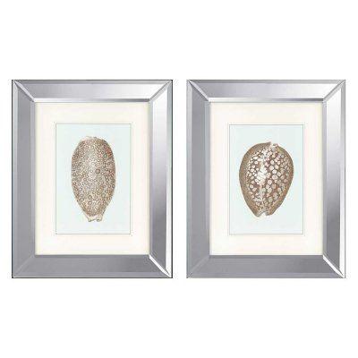 Paragon Shells I Framed Wall Art - Set of 2 - 1215