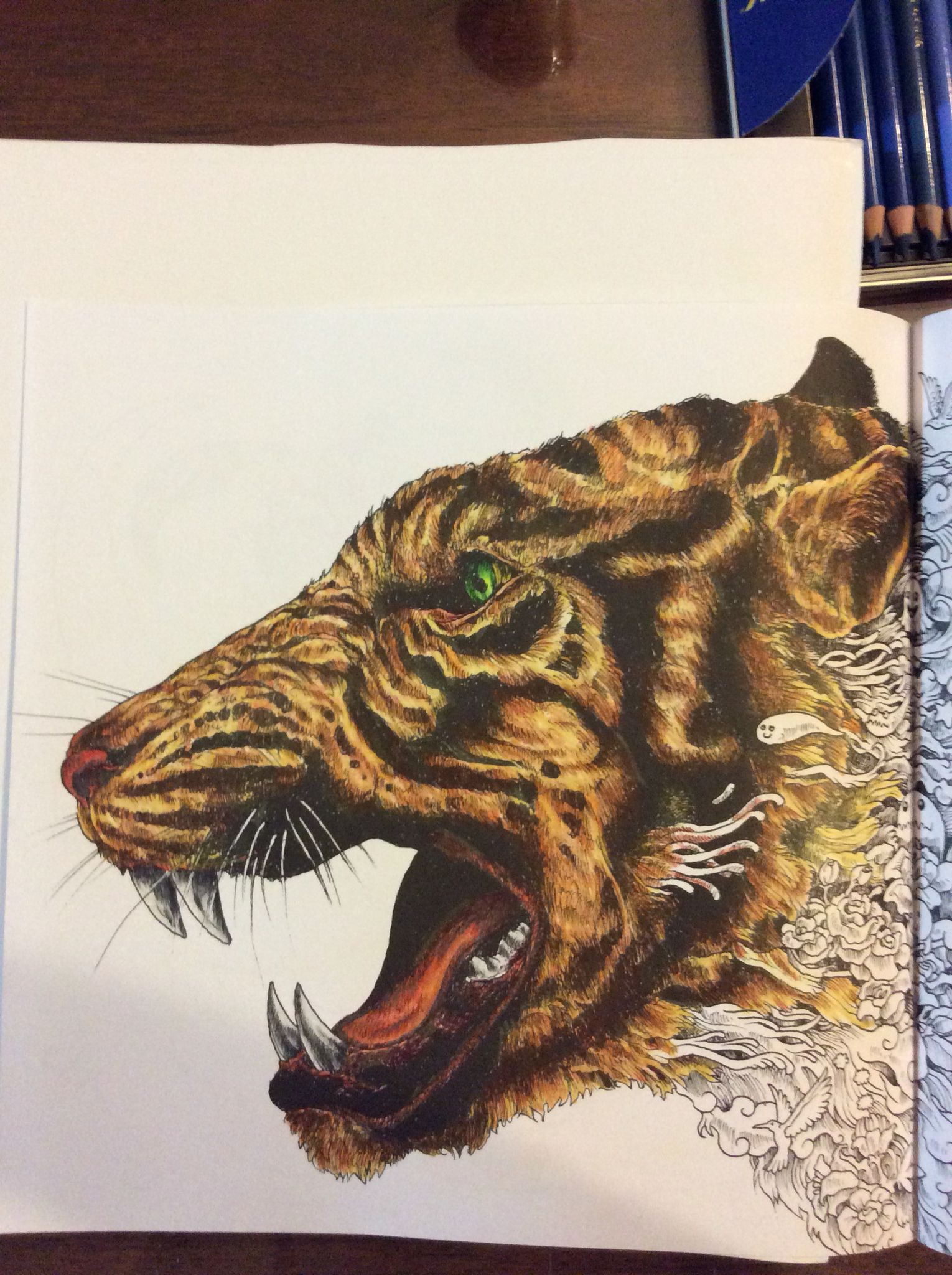 Art therapy coloring book michael omara - Tiger Close Up From The Animorphia Coloring Book By Michael O Mara Books