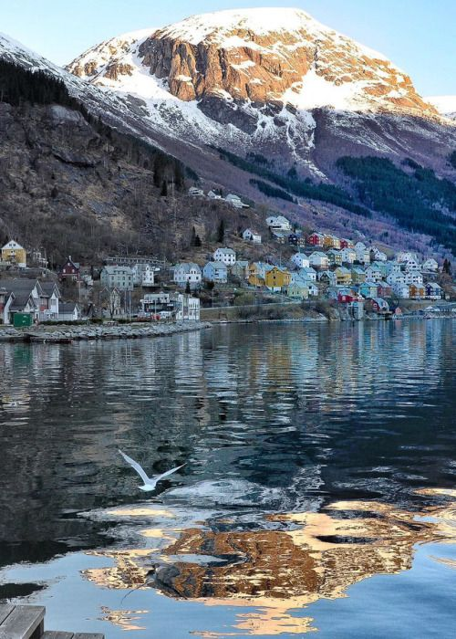 Why Visit the Tiny Town of Odda, Norway | Camping norwegen