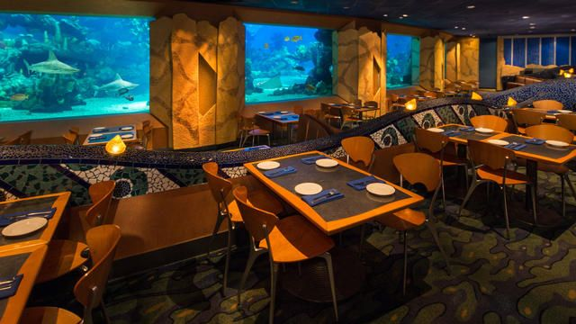 Coral Reef Restaurant Walt Disney World