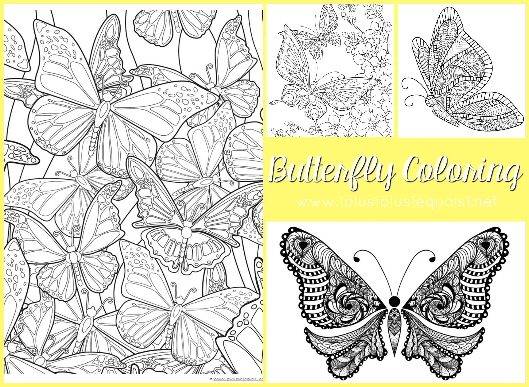 Some beautiful butterflies to color. Just Color! ~ Free Coloring ...