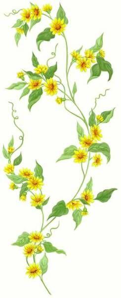 Yellow floral border ivy flowering vine border yellow 8 feet item yellow floral border ivy flowering vine border yellow 8 feet item number 20877 mightylinksfo