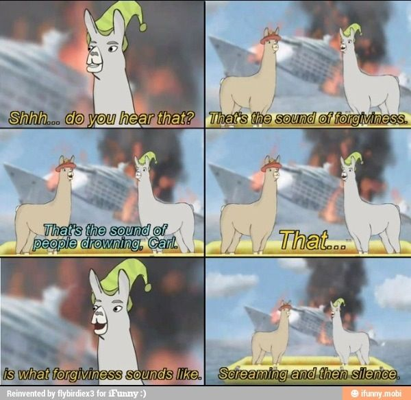 Llamas in hats :) clearly I\'ve been chilling with the group ...