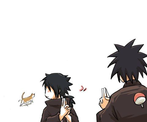 Aaww cute the cat is distracting Izuna # izuna #madara