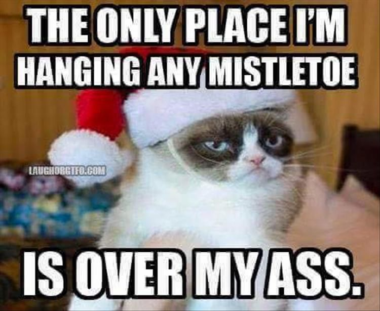 Funny Christmas Music Meme : When is too early for christmas festivities