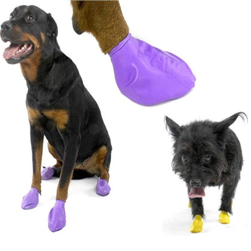 Pawz boots pet emergency pet emergency preparedness