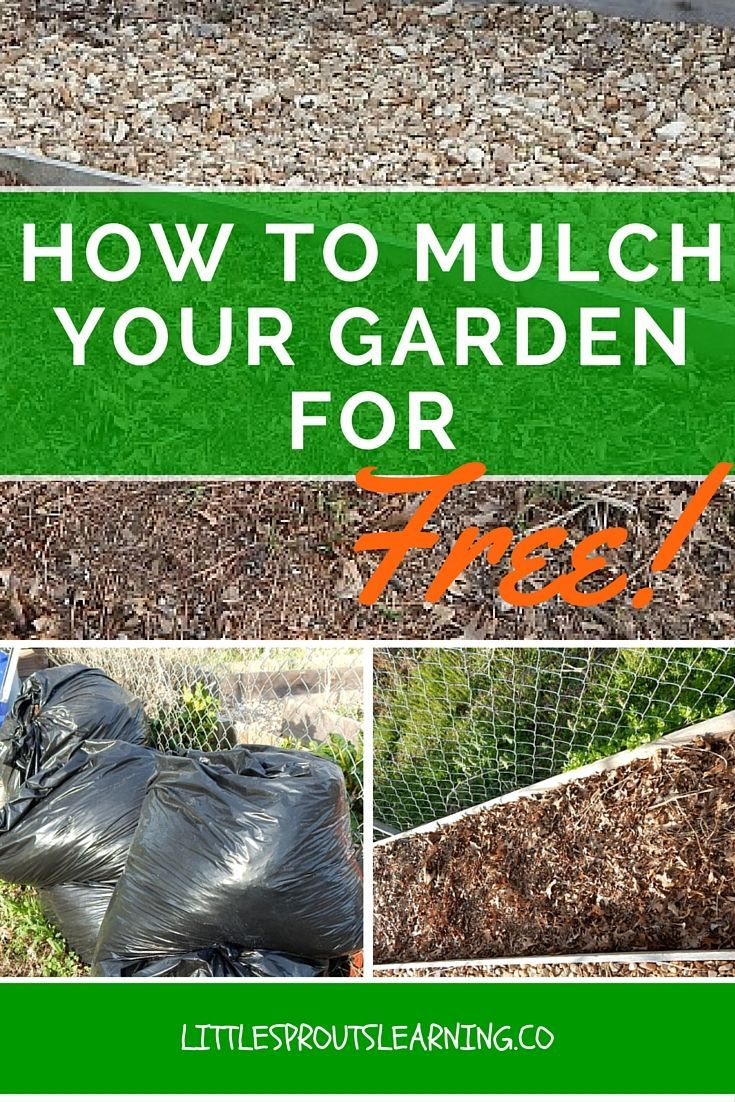 How to Mulch your Garden for Free | Pinterest | Save water, Gardens ...