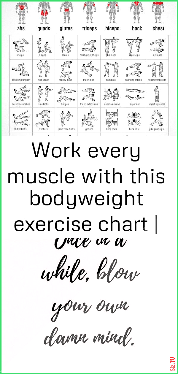 Work every muscle with this bodyweight exercise chart  lifehacker australia 4 Work every muscle with...