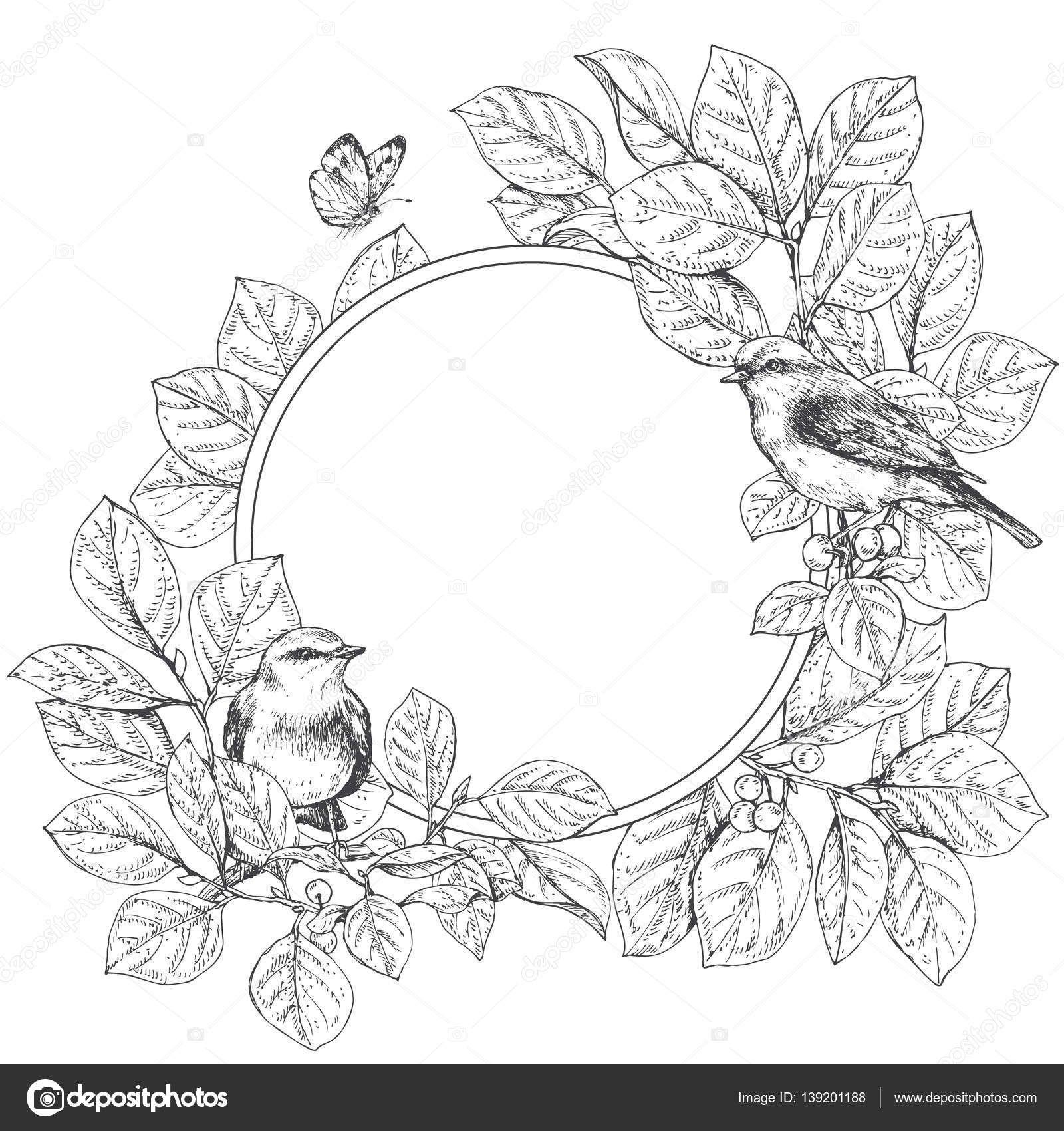 Dibujado a mano doodle flores marco redondo. Pájaros en ramas y ...