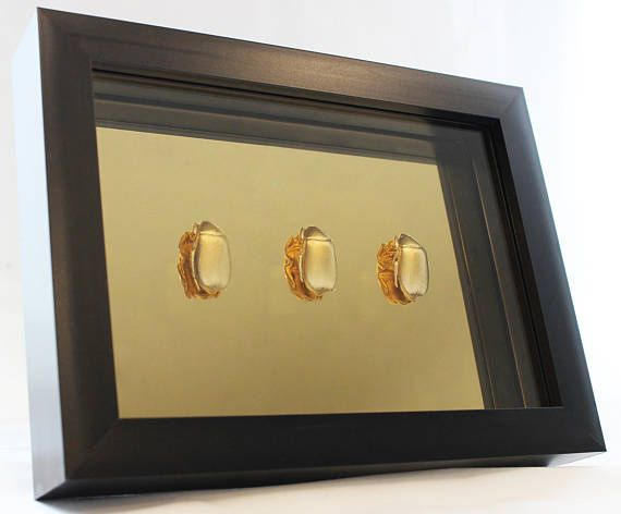 Framed Wall Art - Gold Beetles on Gold Mirror 5\