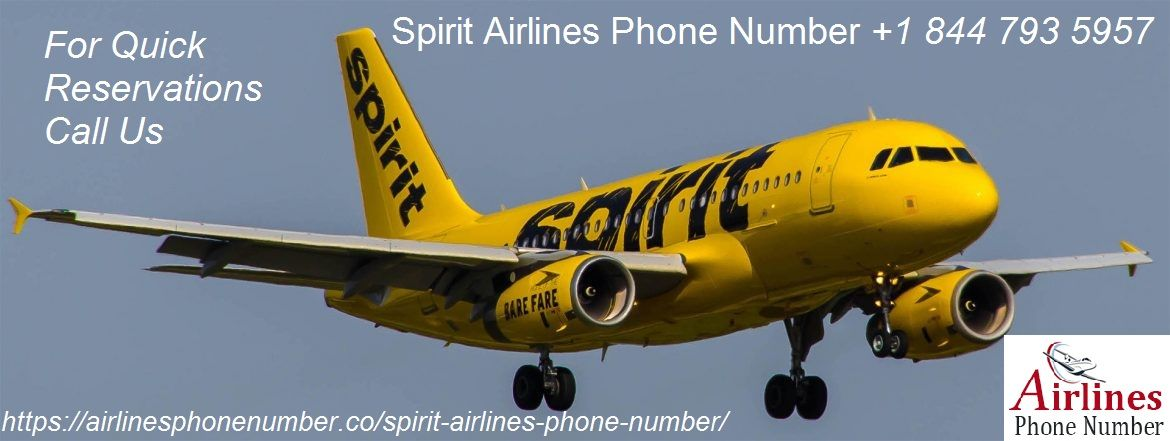 Spirit Airlines Phone Number Spirit Airlines Airlines Phone Numbers