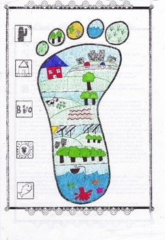 My Ecological Footprint | Ecology | Pinterest | Footprints ...
