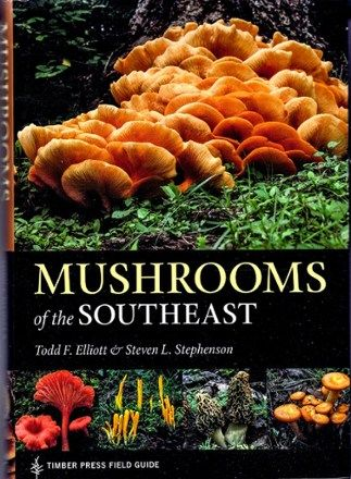 Timber Press Mushrooms Of The Southeast Rei Co Op In 2020 Stuffed Mushrooms Field Guide Northern Florida