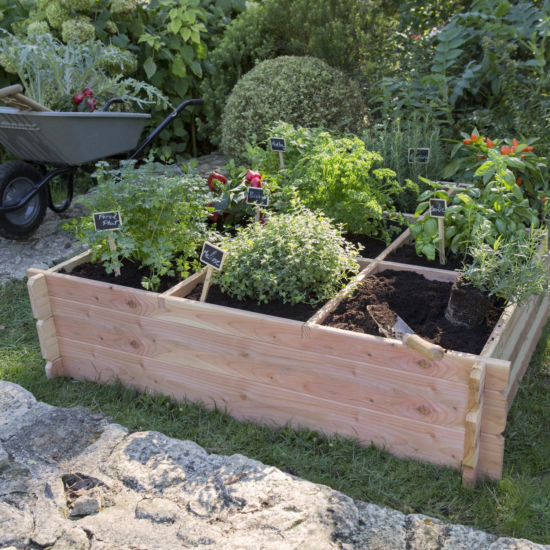 Cultiver Avec Des Carres De Potager Carre Potager Jardin En Carre Potager