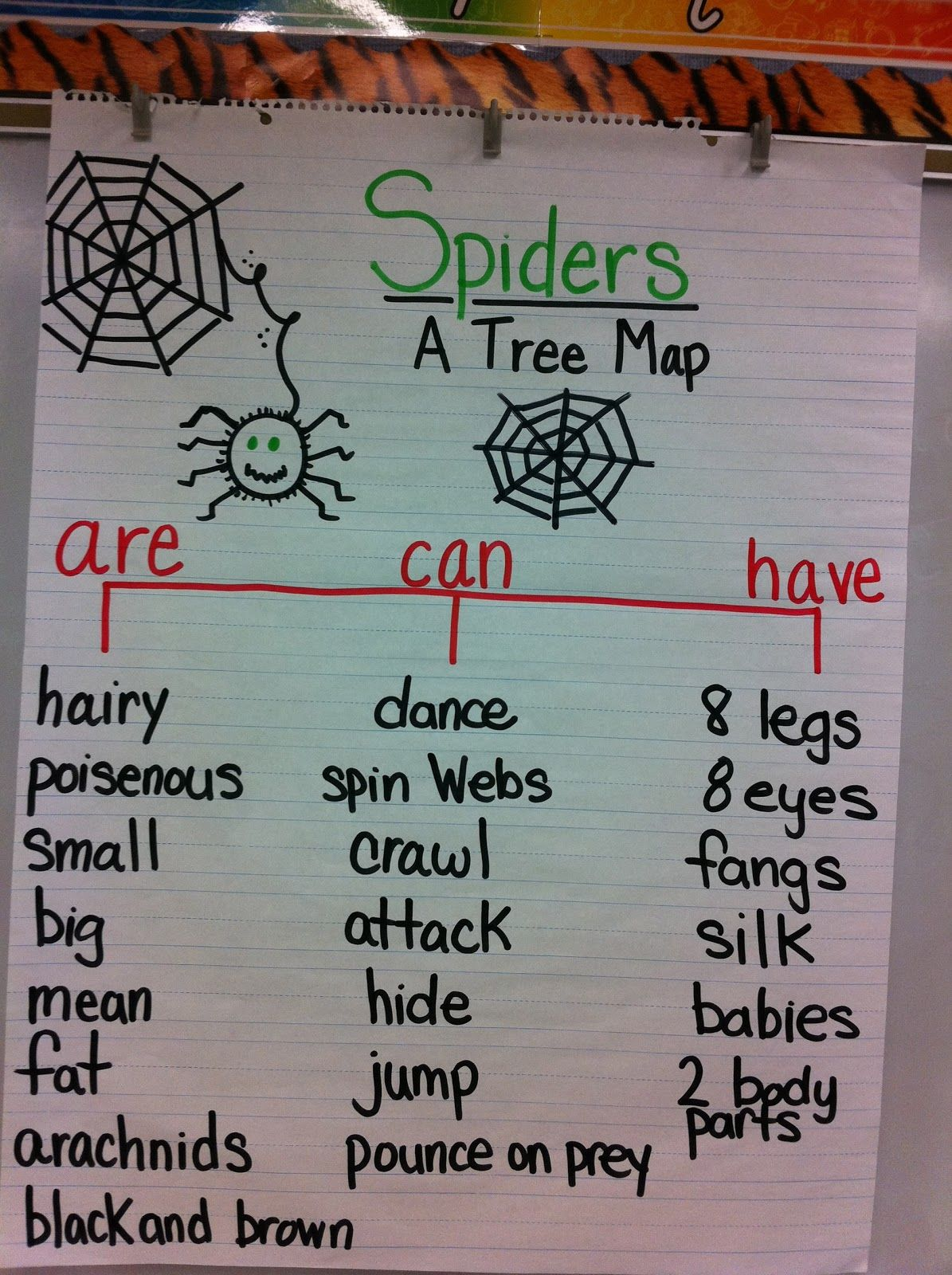 Mrs. Andrews\' Teaching Passion: Eeek ... Spiders!! | Spiders ...