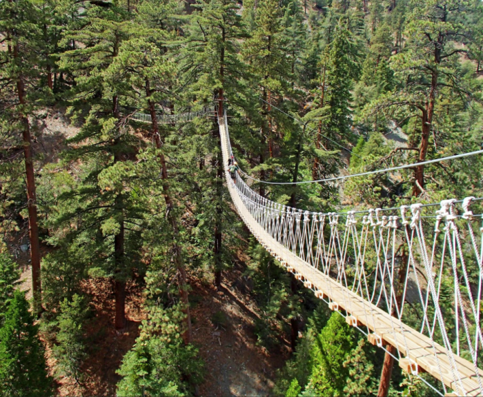 This Canopy Walk In Southern California Is A Sceni