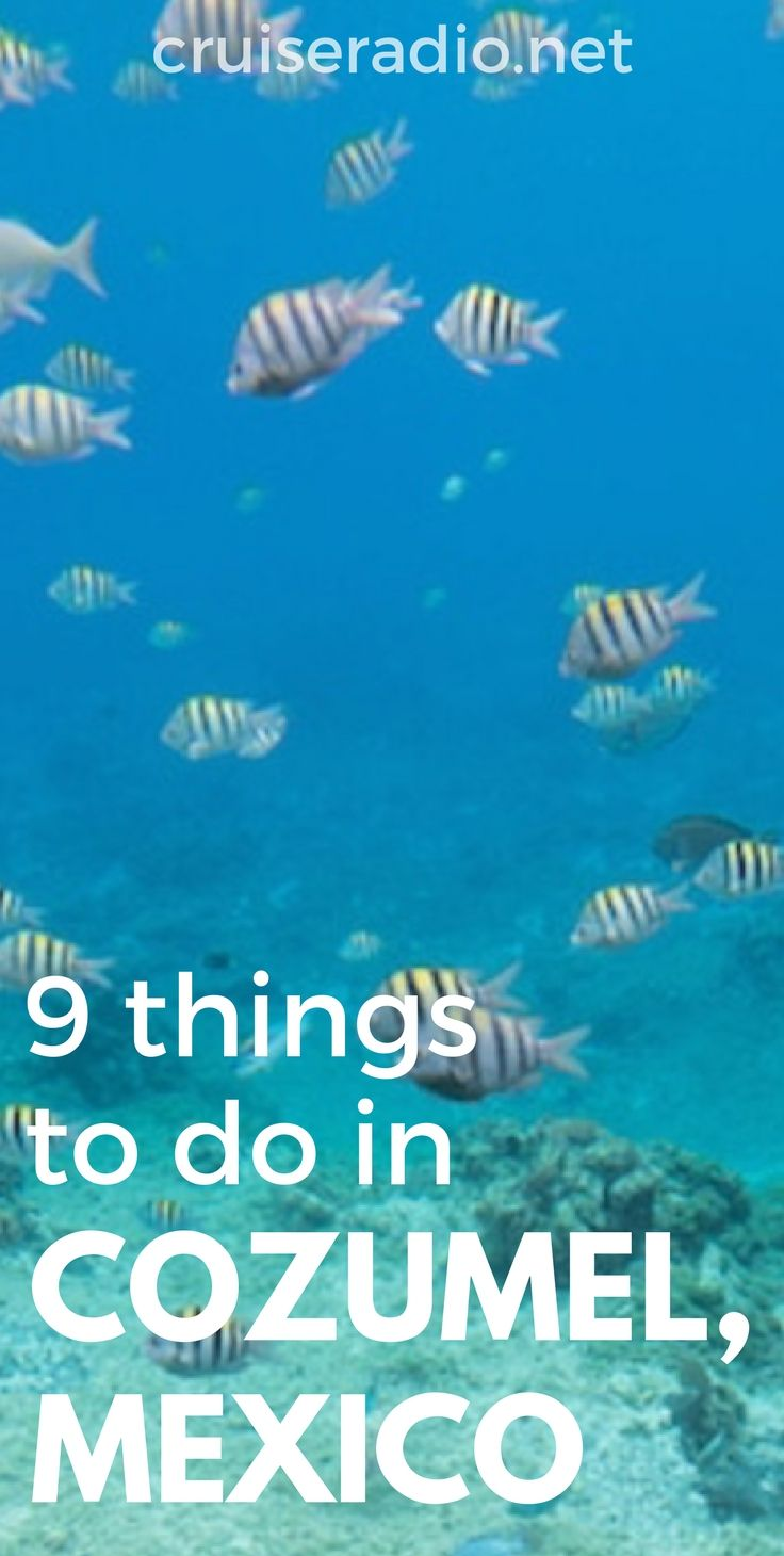 9 Things To Do In Cozumel Mexico Cozumel Mexico Destinations