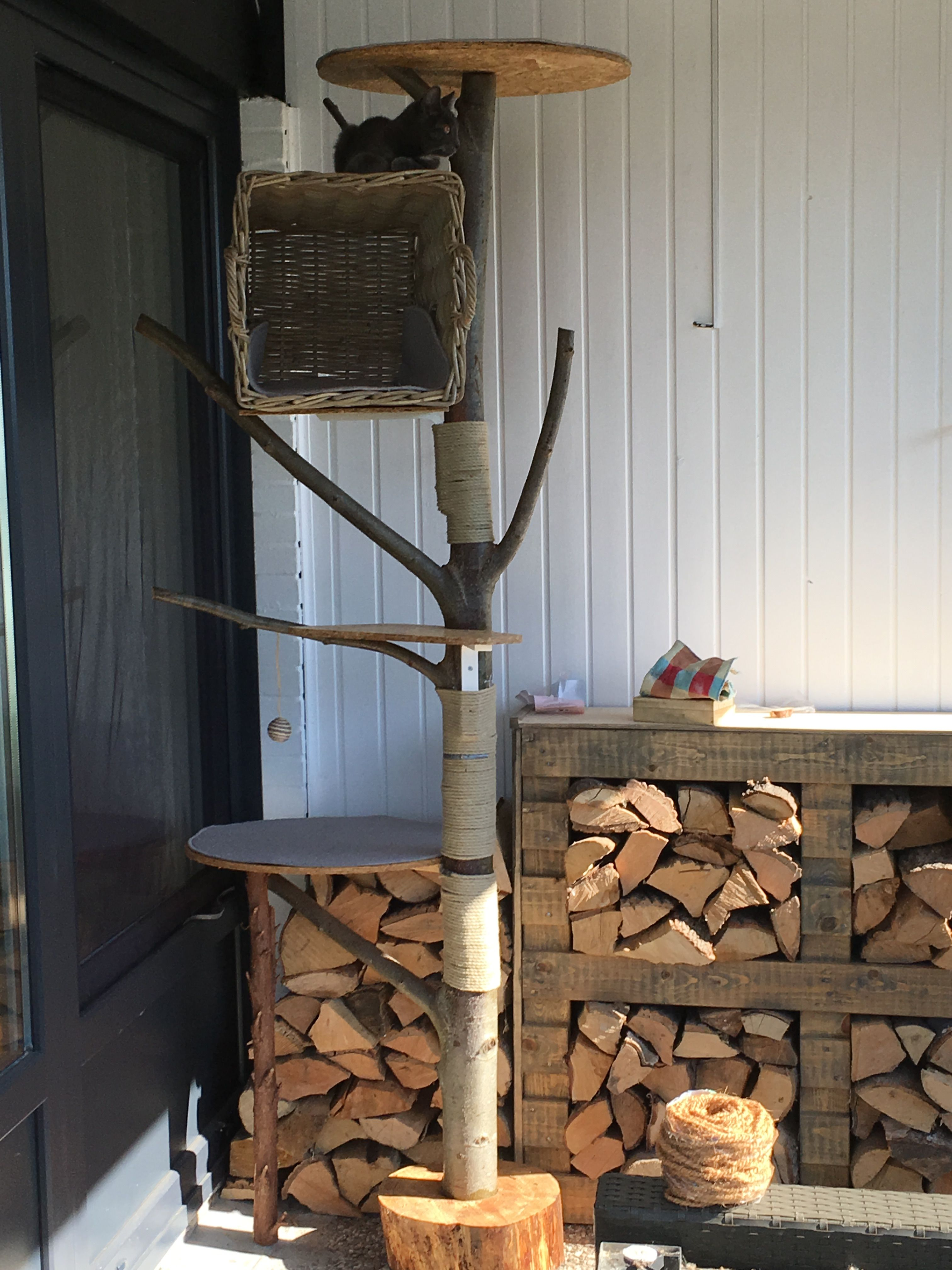 outdoor kratzbaum diy | katzen | pinterest | cats, cat enclosure und