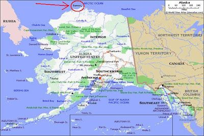 Nomadic Birder: Barrow, Alaska   (I want to drive all the way to