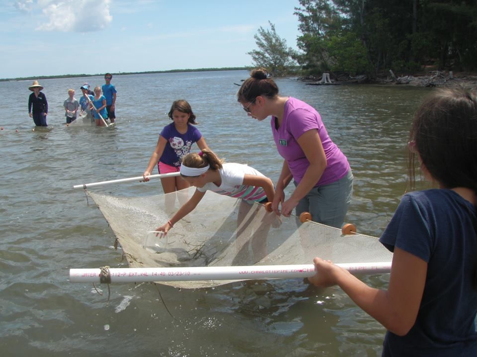 We keep our summer ecology program kids immersed in the #IndianRiverLagoon with the help of Quail Valley Charities,Inc., Come sein with us at discoverelc.org  #discoverELC #familyactivities #ecotourism #summercamps