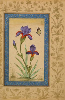 Blue iris with butterfly Fine Art Print by Anonymous   گل و مرغ in