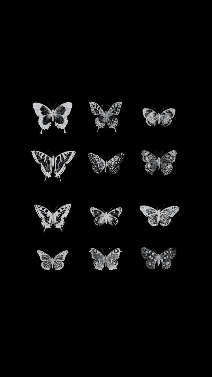 Pin By Jordayn Fleetwood On Tattoo In 2020 Butterfly Wallpaper Butterfly Wallpaper Iphone Iphone Background Wallpaper