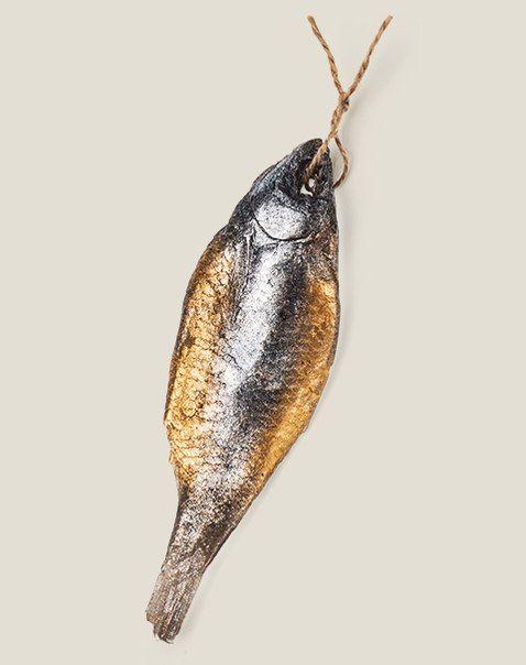Pin de Tamara Gurzuff en Fish, fishing   Pinterest