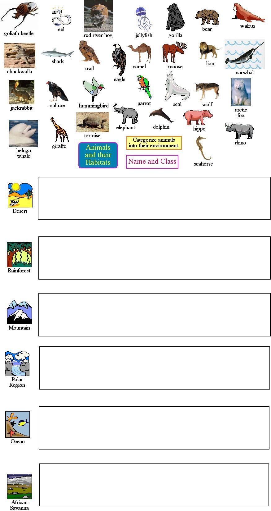 hight resolution of animal classification   Homeschool science
