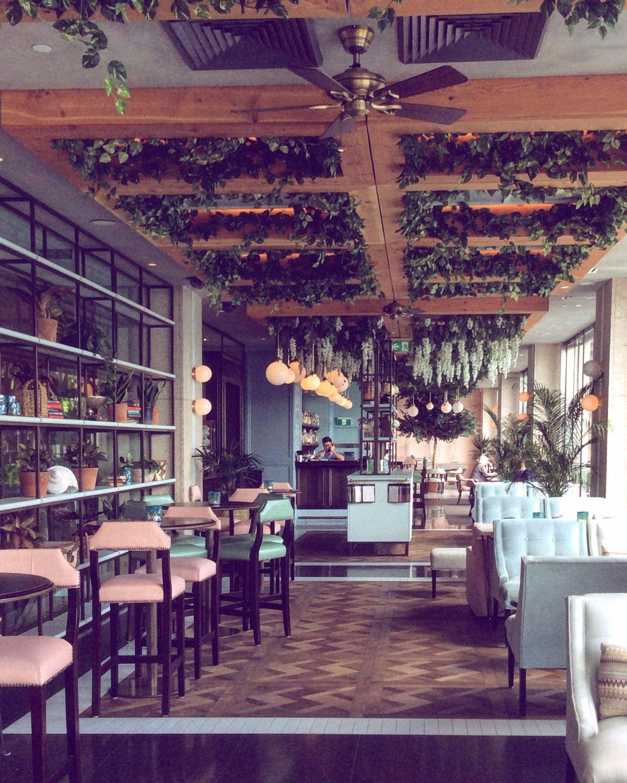Hacienda Sydney Central Business District Restaurant Reviews Phone Number Photos Tripadvisor