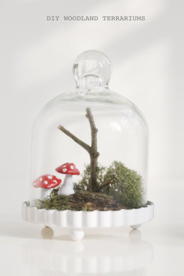 Bell Jar Decorating Ideas Diy Woodland Terrariums  Terraria Bell Jars And Clay