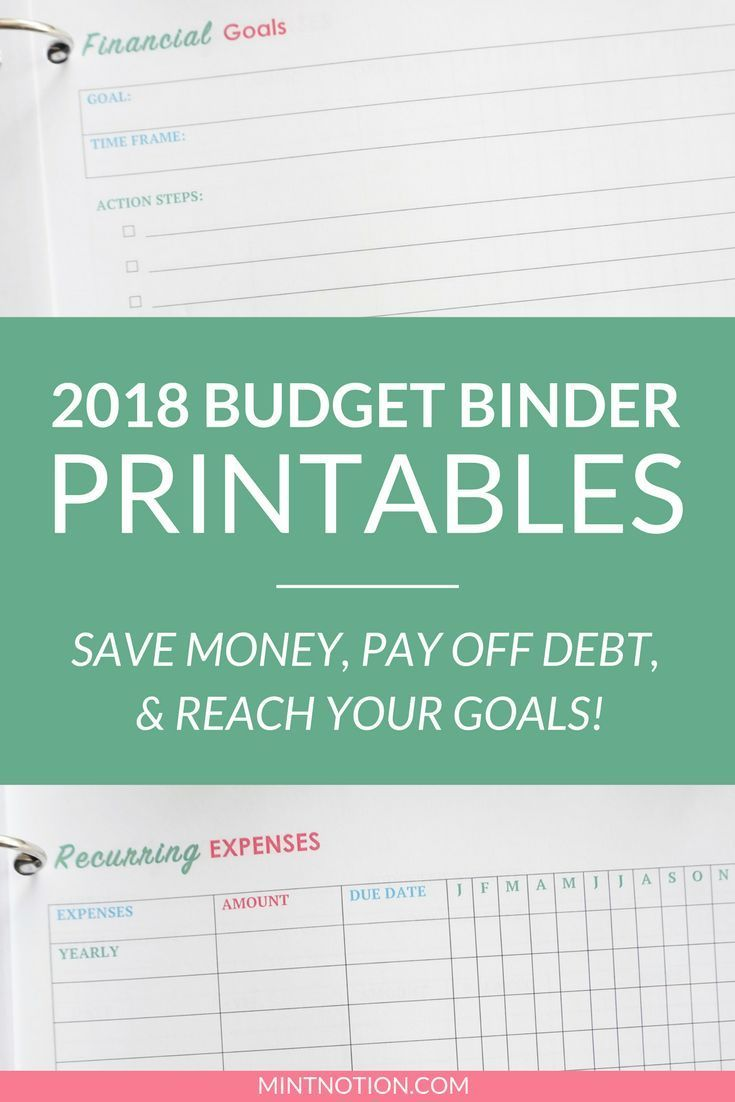 2018 Budget Binder printables! Organize your finances this year with ...