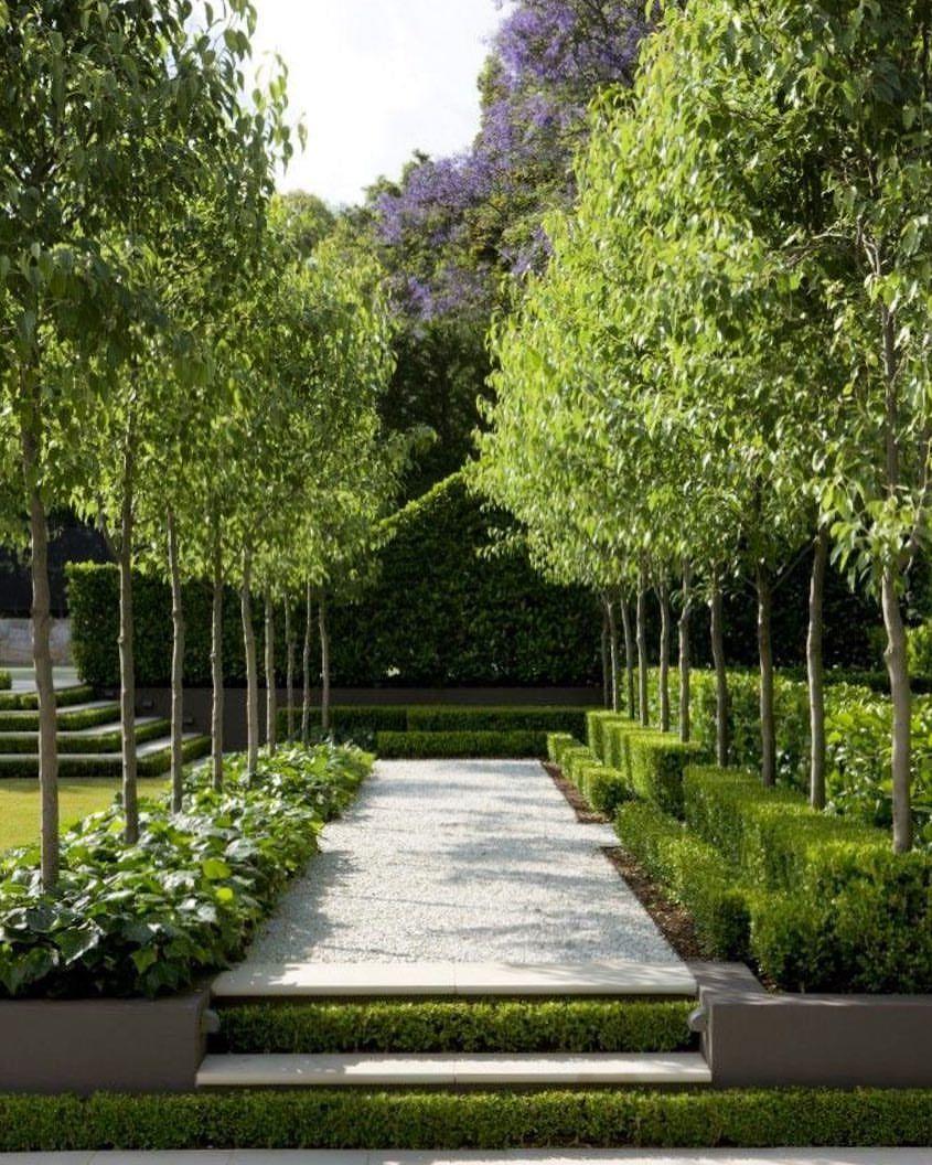 Pinterest garden love ~ Rebecca #hedges #boxwood # ...