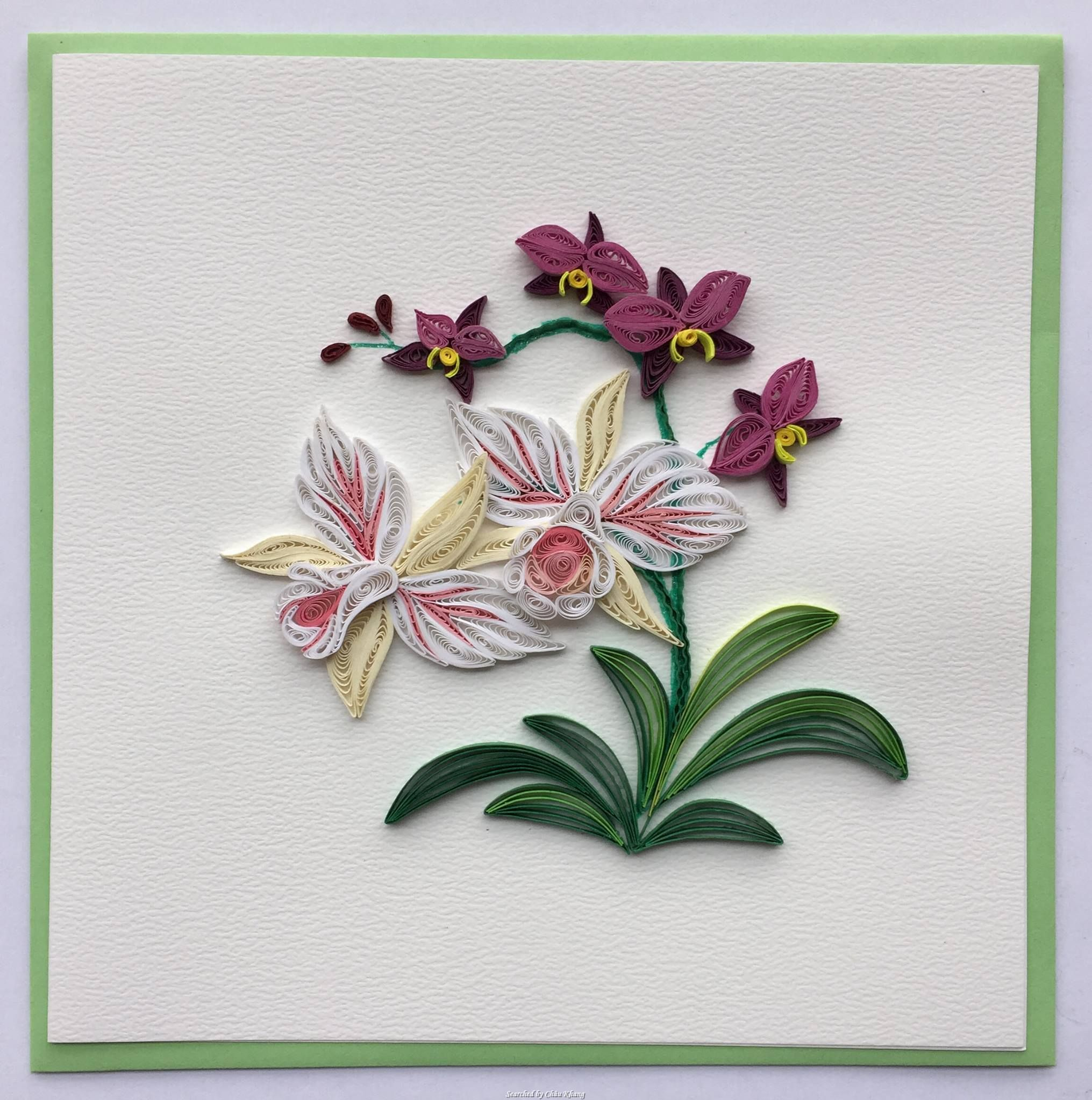Lan Quilling Quilled Flower Cards Searched By Chau Khang